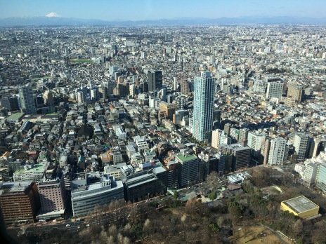 View from Tokyo Metropolitan Government Building, with Mount Fuji in the background